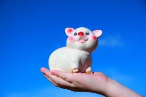 1331143_piggy_bank