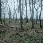 RoundtreeCemetery