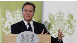 David-Cameron-RSA-speech-17-01-11